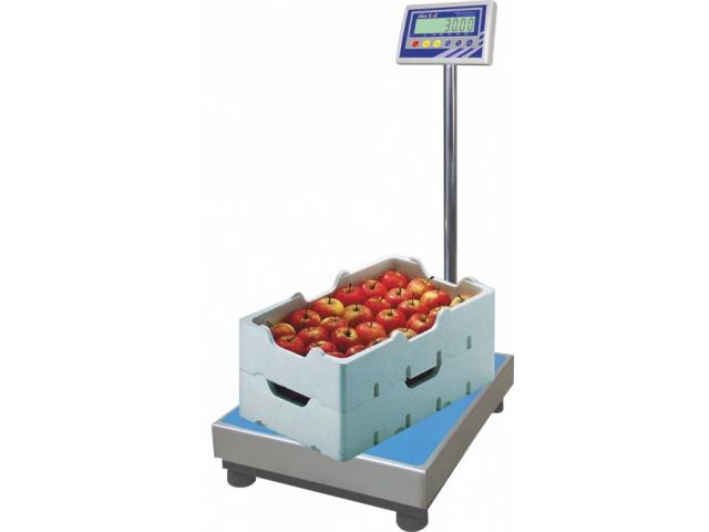 Напольные весы BX-100D1.3-3